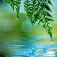 Stress & Utbrändhet 2 – Energi